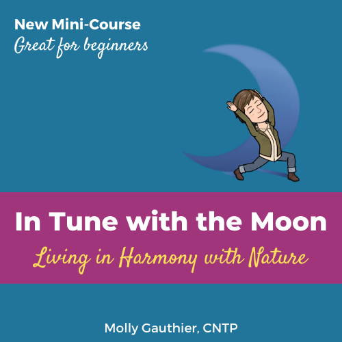 In Tune with the Moon - mini course